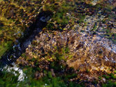 Rocks underwater — Stock Photo