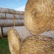 Piles of hay — Stock Photo