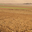 Plowed fields — Stock Photo #2305557