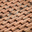 Royalty-Free Stock Photo: Old roof