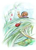 Fairytale illustration — Stock Photo