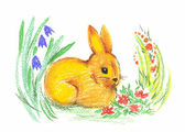 Drawing of rabbit — Stock Photo