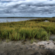 Stormy evening at low tide — Stock Photo #2192048