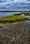 Storm at low tide — Stock Photo