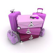 Elegant woman baggage — Stock Photo