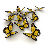 Yellow butterflies — Stock Photo