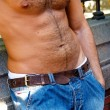 Hairy male torso - Stock Photo
