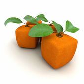 Cubic orange duo — Stock Photo