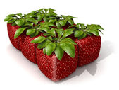 Pack of six cubic strawberries — Stock Photo