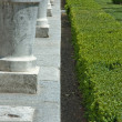 Stock Photo: Balustrade and hedge