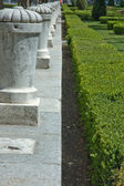 Balustrade and hedge — Stock Photo