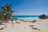 Caribbean cove — Stock Photo