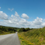 夏日的道路上 — 图库照片