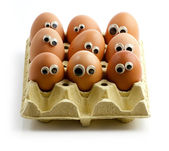 Egg audience — Stockfoto