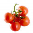 Tomates - Stock Photo