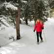 Foto de Stock  : Lady walking with snow shoes