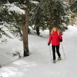 Foto Stock: Lady walking with snow shoes