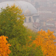 Постер, плакат: Autumn leaves in a foggy day