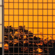 Sunset reflecting in modern building — Stock Photo