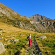 Stock Photo: Lady trekker looking mountain landscape
