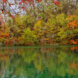 Pond and rocks in autumn vegetation — Stock Photo