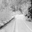 Bw snow covered road with car track — Stock Photo