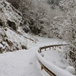 Mountain road covered with snow — Stok fotoğraf