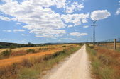 Dirt road leading to nowhere — Stock Photo