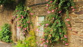 Old house with columbine flowers — Stock Photo