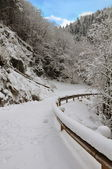 Mountain road covered with snow — Stock Photo