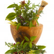 Herbs — Stock Photo
