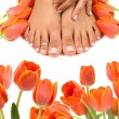 Royalty-Free Stock Photo: Feet and Tulips