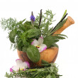 Herbal Therapy - Stockfoto