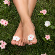 Stock Photo: Feet on Grass