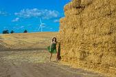 風力タービン — ストック写真