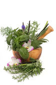 Thérapie de fines herbes — Photo