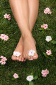 Feet on Grass — Stock Photo