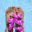 Feet — Stock Photo #2221560