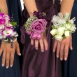 Stock Photo: Corsages