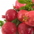 Organic Pomegranates - Stock Photo