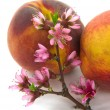 Royalty-Free Stock Photo: Peach