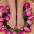 Valentine Spa - Stock Photo