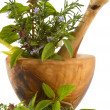 Stock Photo: Herbs