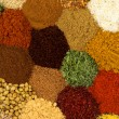 Spices and Herbs - Stockfoto