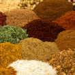 Stock fotografie: Spices and Herbs
