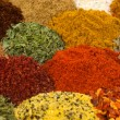 Spices and Herbs — Stock fotografie