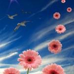 Daisies, sun, birds, and blue sky — Stock Photo #2225377