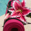 Yoga Mat — Stockfoto