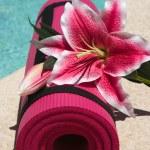 Yoga Mat — Stock Photo #2300182