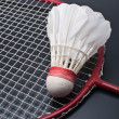 Royalty-Free Stock Photo: Badminton